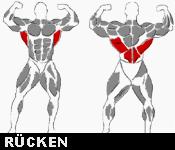 Hantelübungen Rücken
