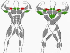 Hantelübungen Schultern