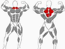 Nacken Übungen