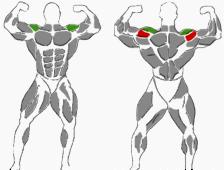 Seitliche Schultern Hanteltraining