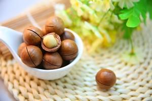 Bild Quelle: https://pixabay.com/de/macadamia-n%C3%BCsse-nut-protein-1098170/